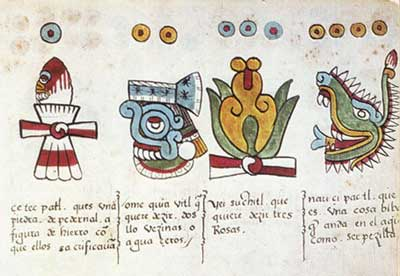 "These images from the Codex Magliabechiano show the first four day-symbols for the ""year"", or 'tonalpohualli'. They represent flint, the rain, a flower, and a crocodile."
