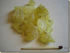 Mastic tears that are made into mastic gum