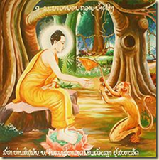 According to legend, a monkey brought Buddha honey while he lived in the wilderness