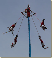 Four voladores ritualistically descend a 30 meter pole