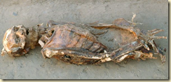 This body was preserved by dry air instead of deliberate mummification