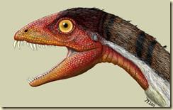 This creature was first discovered in New Mexico
