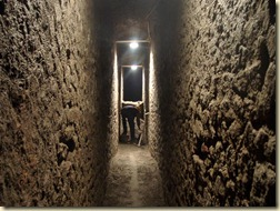 Roman Cesspit -- Photograph courtesy Domenico Camardo, Herculaneum Conservation Project